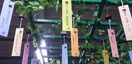 リニアコライダー短冊-水沢